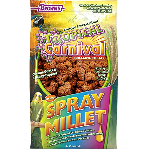 F.M. Brown's Tropical Carnival Calcium Coated and Honey Dipped Spray Millet, Daily Foraging Treat for Pet Birds, 4 Count