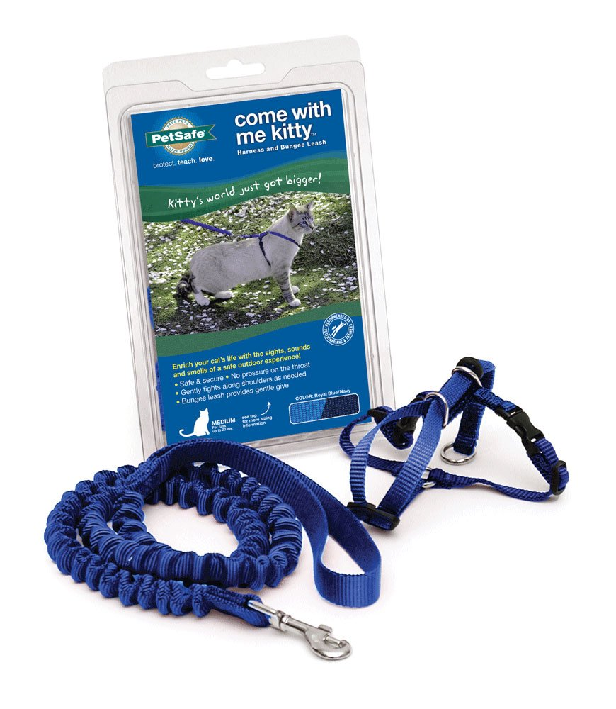 PetSafe Come With Me Kitty Harness and Bungee Leash, Large, Royal Blue