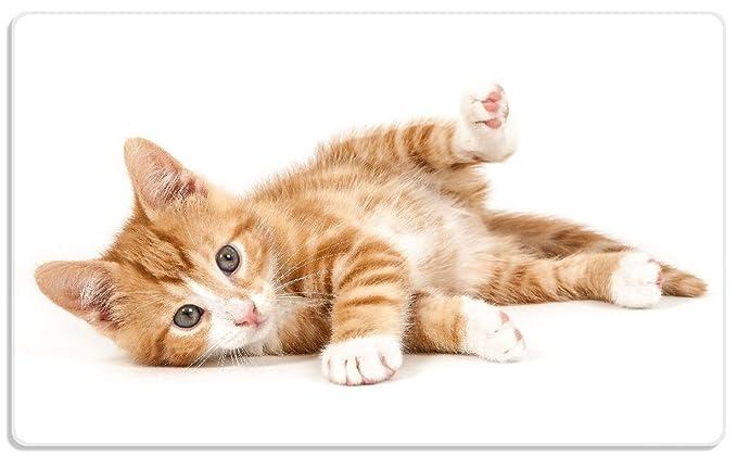 empireposter EIN Tag mit Katze ist EIN guter Tag lebensmittelecht Frühstücksbrettchen Resopal Grösse 14,2x23,16 spülmaschinengeeignet
