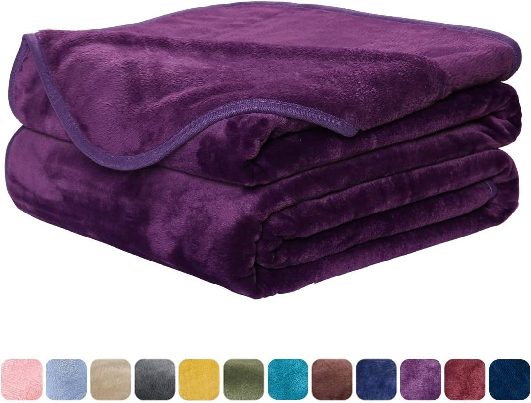 EASELAND Soft Blanket King Size Blanket Warm Microplush Lightweight Thermal Fleece Blankets for Couch Bed Sofa,90x108 inches,Purple