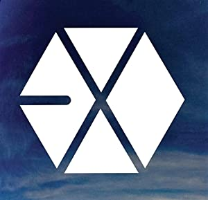 "EXO 5.5"" Logo K-Pop Rock Band Logo Decal Sticker for Cars Laptops Tablets Skateboard - WHITE"