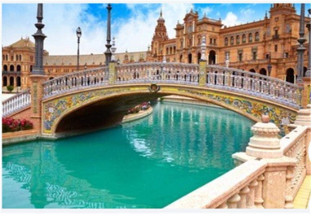Puzzle 1000 Piezas Sevilla Sevilla Plaza De España Puente Andalucía España Plaza Arte Bricolaje para Adultos Mayores Adultos: Amazon.es: Hogar