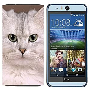 TECHCASE---Cubierta de la caja de protección para la piel dura ** HTC Desire Eye ( M910x ) ** --Blanca Singapur Gatito Gato Devon