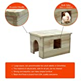 Beaks And Paws B&P Large Flat Roof Hideout House