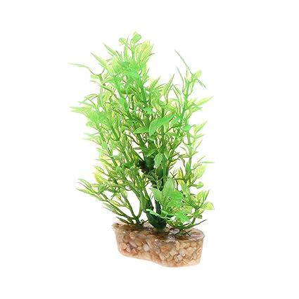 Daxibb Adorno para plantas acuáticas con base estable para acuario ...