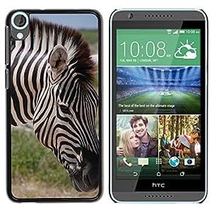 Super Stella Slim PC Hard Case Cover Skin Armor Shell Protection // M00145031 Zebra The Horse Animal Pet Horse // HTC Desire 820