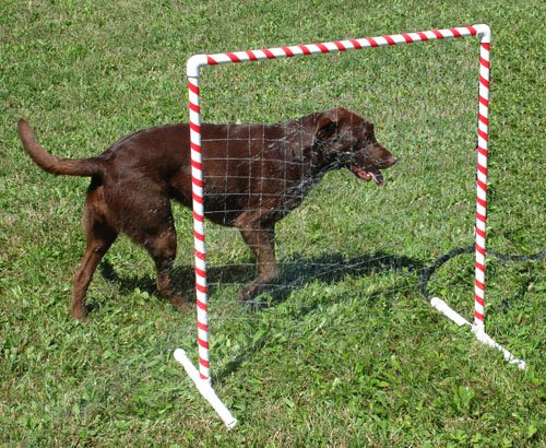 Affordable Agility Doggie Drencher by Affordable Agility