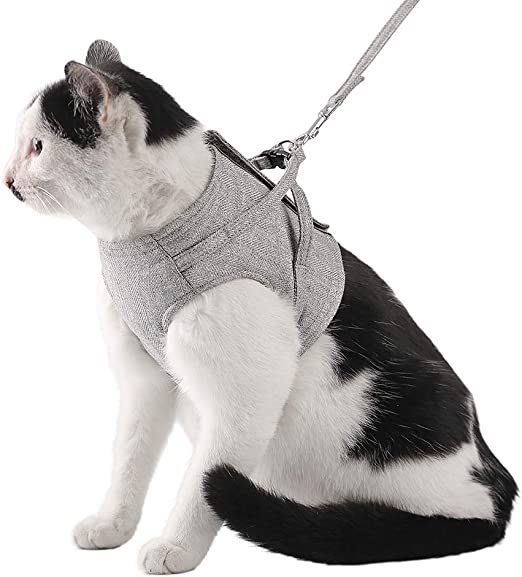 Chaleco de arnés ajustable para gatos, material Oxford, a prueba de escapes, arnés de gato y correa para caminar, arnés seguro con arnés de malla suave para gatos, gatos, cachorros, conejos: Amazon.es: