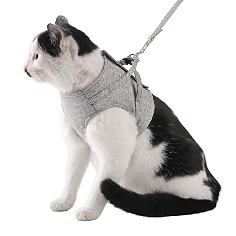 Minjie Arnés Ajustable para Gatos, Material Oxford, a Prueba de ...