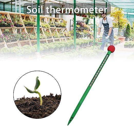Exuberanter Termómetro de Suelo para jardín, termómetro de sonda, Tubo Exterior de Cristal Integrado, plástico Verde, termómetro de jardín al Aire Libre 10~110 °C – 32 cm 1,4 cm: Amazon.es: Hogar