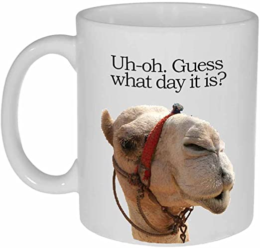 Amazon Com Guess Que Dia Es Taza De Cafe O Te Hump Day Funny