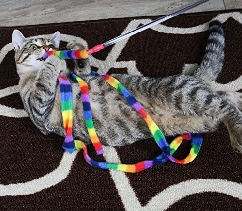 Cat Dancer Products Rainbow Cat Charmer 6