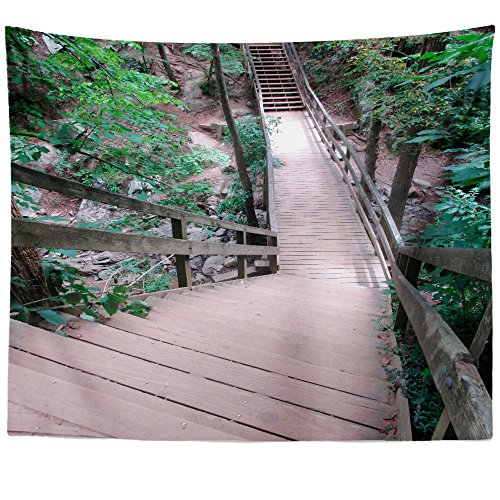 aper Outdoor - Wall Hanging Tapestry - Picture Photography Artwork Home Decor Living Room - 68x80 Inch (02E7B) ()