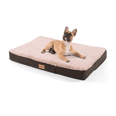 """homeoutfit24 """"Buddy cama para perros lavable, ortopédica y antideslizante,"""