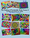 The Making of Psychedelic Brain Freeze II: An Illustrated Book for Adults