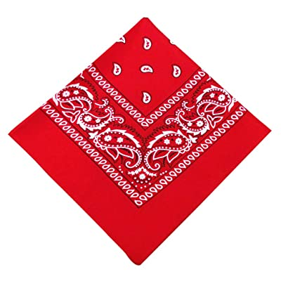 Paisley Bandanas, Cowboy Head Scarf, Double Sided Cotton Turban Face Cover Headband Neck Gaiter Wristband Headwrap: Electronics