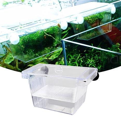 Awhao - Incubador de acuario de doble cubierta para pecera (acrílico), diseño de