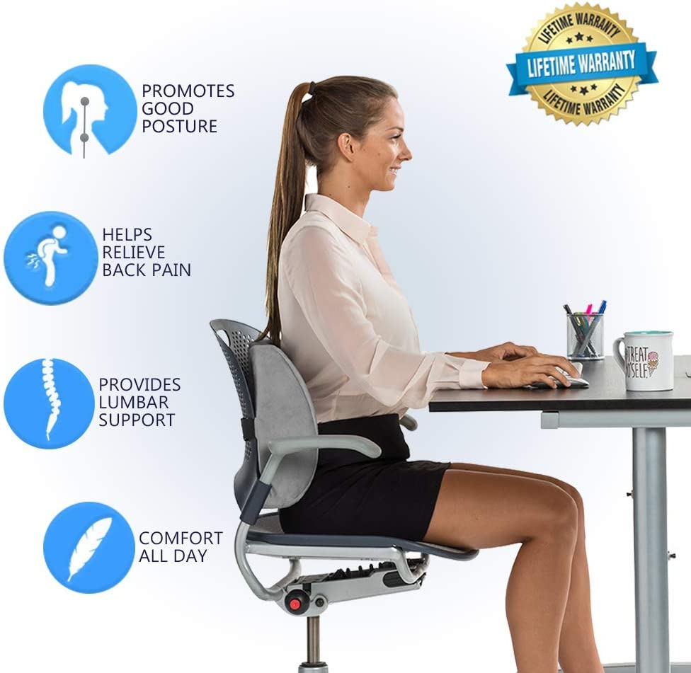 ComfiLife Lumbar Support Back Pillow Office Chair and Car Seat Cushion - Memory Foam with Adjustable Strap and Breathable 3D Mesh: Home & Kitchen