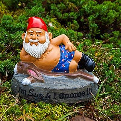 alltoshop Sexy and i GNOME it. Enano de jardín – Sexy & I GNOME it. Enano de jardín jardín Figura Boxers hört: Amazon.es: Jardín
