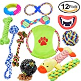 Dog Toys 12 Pack Gift Set, Pet Teething Toys Cotton Ball Rope and Chew Squeaky Toys for Medium to Small Doggie