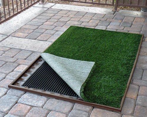 Pup-Lawn Complete Patio Lawn Kit (3' x 5')