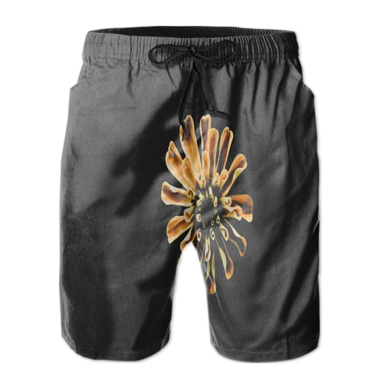 Clover Quick Dry Swim Trunks Summer Beach Shorts Running Board Shorts