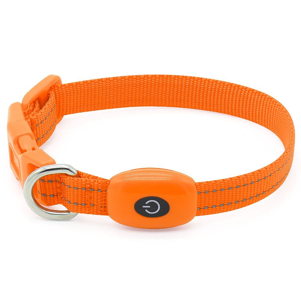 Clan_X Led Dog Collar, USB Rechargeable light up Pet Collar for small dogs, Glowing in the Dark Nylon Webbing Flashing Collar with Reflective Stitches Make Your Pets Visible & Safe (Orange)