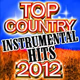 Top Country Instrumental Hits 2012