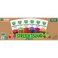 Stretch Island Fruit Leather Snacks Variety Pack - 0.5 Ounce Strips - Pack of 95 (Pack of 95)