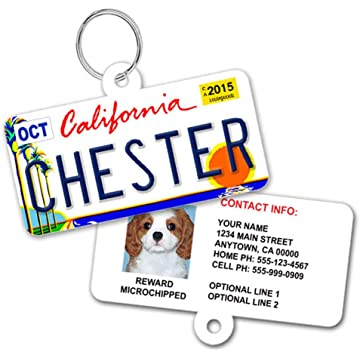 1 Cute Pooch License Plate