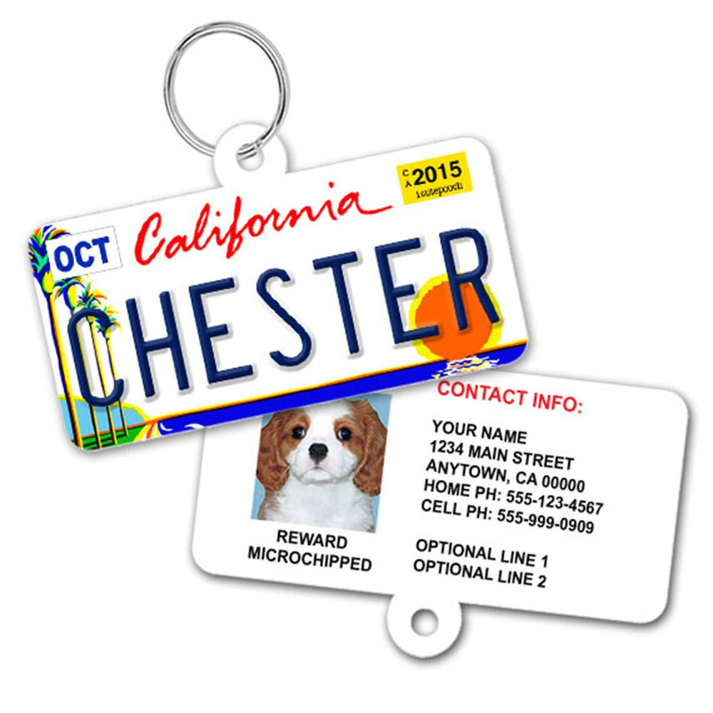License Plate Custom Dog Tags for Pets - Personalized Pet ID Tags - Available For All 50 States - Dog Tags For Dogs - Dog ID Tag - Personalized Dog ID Tags - Cat ID Tags - With Pet Photo by 1 Cute Pooch