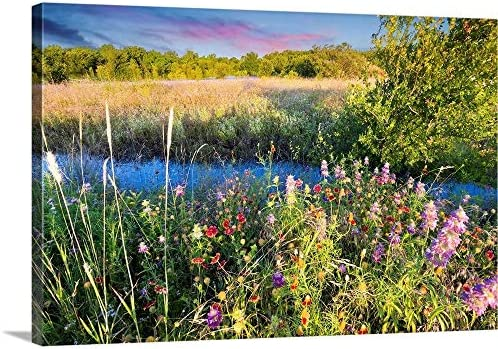 GREATBIGCANVAS Texas Wildflowers at Sunrise Canvas Wall Art Print