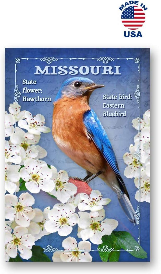 Amazon.com : MISSOURI BIRD AND FLOWER postcard set of 20 identical ...
