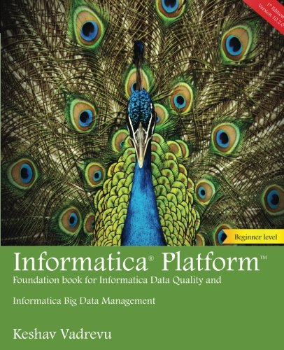 Informatica Platform: A beginner's guide – Foundation book for Informatica Data Quality and Big Data Management (Volume 1)