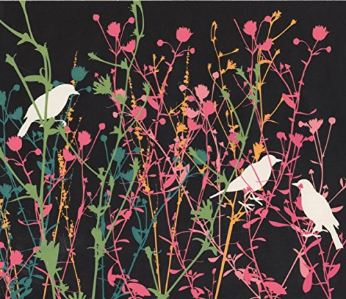 White Birds in Pink Green Yellow Shrubs Charcoal Grey Wallpaper Border Retro Design, Roll 15' x 9
