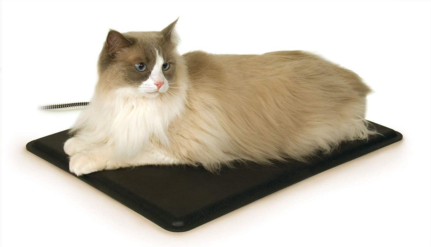 Heated Kitty Pad