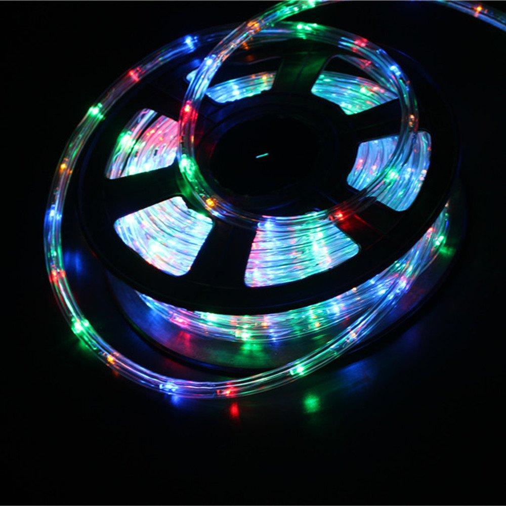 PYSICAL 110V 2-Wire Waterproof LED Rope Light Kit for Background Lighting,Decorative Lighting,Outdoor Decorative Lighting,Christmas Lighting,Trees,Bridges,Eaves (50ft/15M, RGB)
