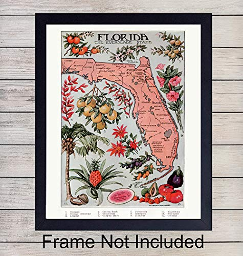 Florida Vintage Map - Unframed Dictionary Wall Art Print - Great Gift for Geography Enthusiasts - Perfect for Classroom - Modern Chic Home Decor - Ready to Frame (8X10) - Art Wall Vintage
