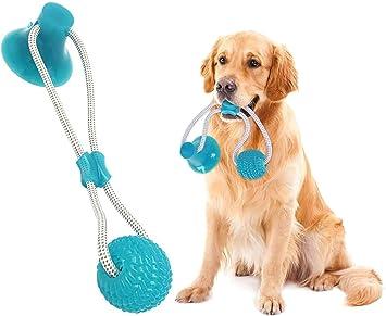 saugnapf spielzeug für hunde