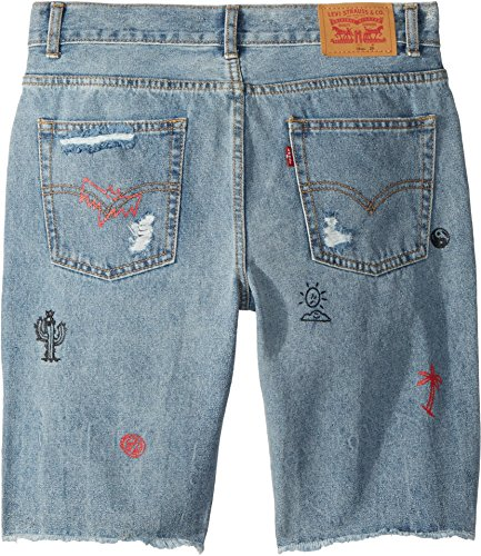 9700b704 Levi's Big Boys' 511 Slim Fit Denim Shorts, Dogtown,20 available in ...