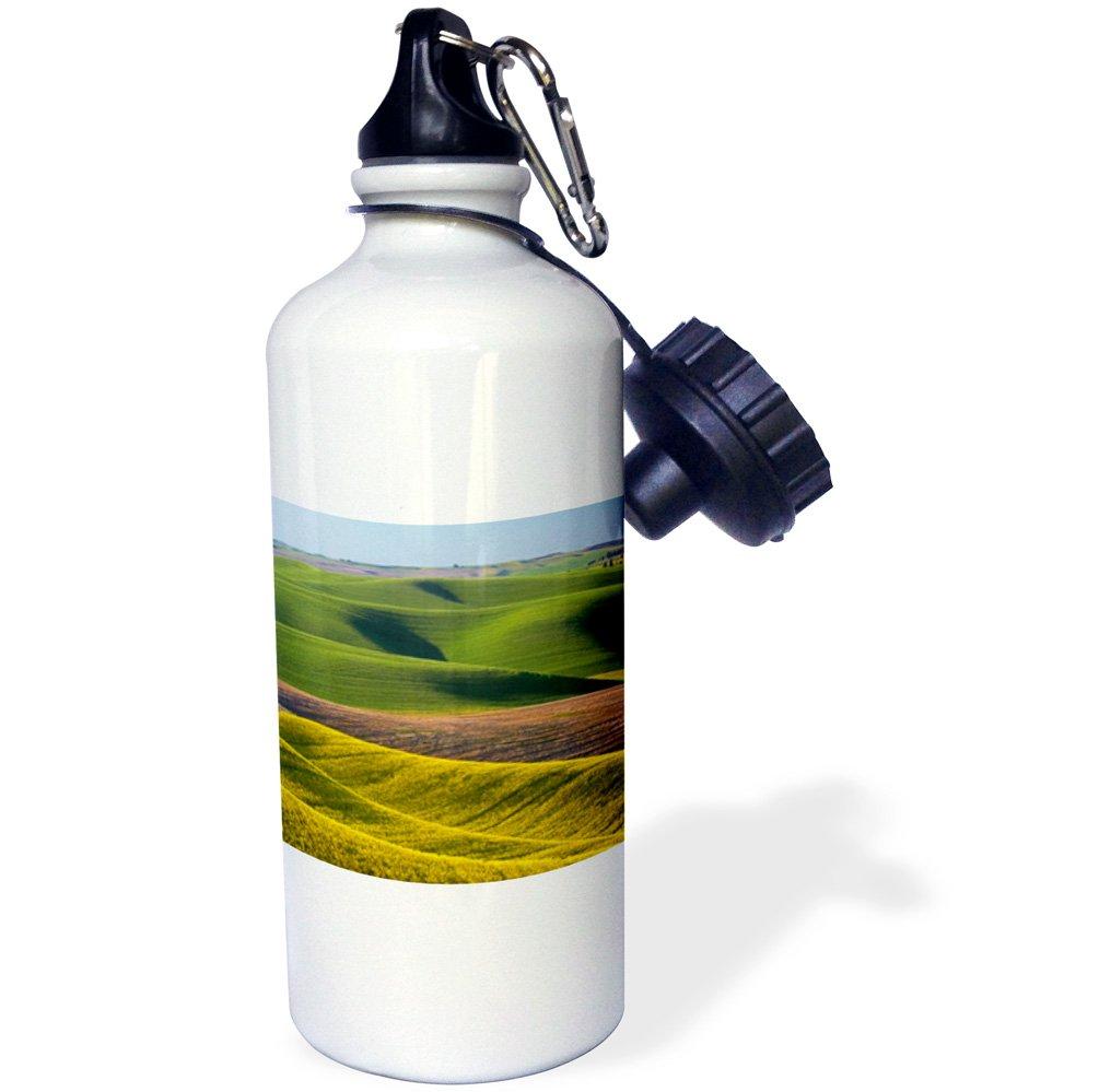 Canola Fields and Wheat-Sports Water Bottle USA wb/_189627/_1 Washington Whitman County 21oz 3dRose Use Palouse Multicolored