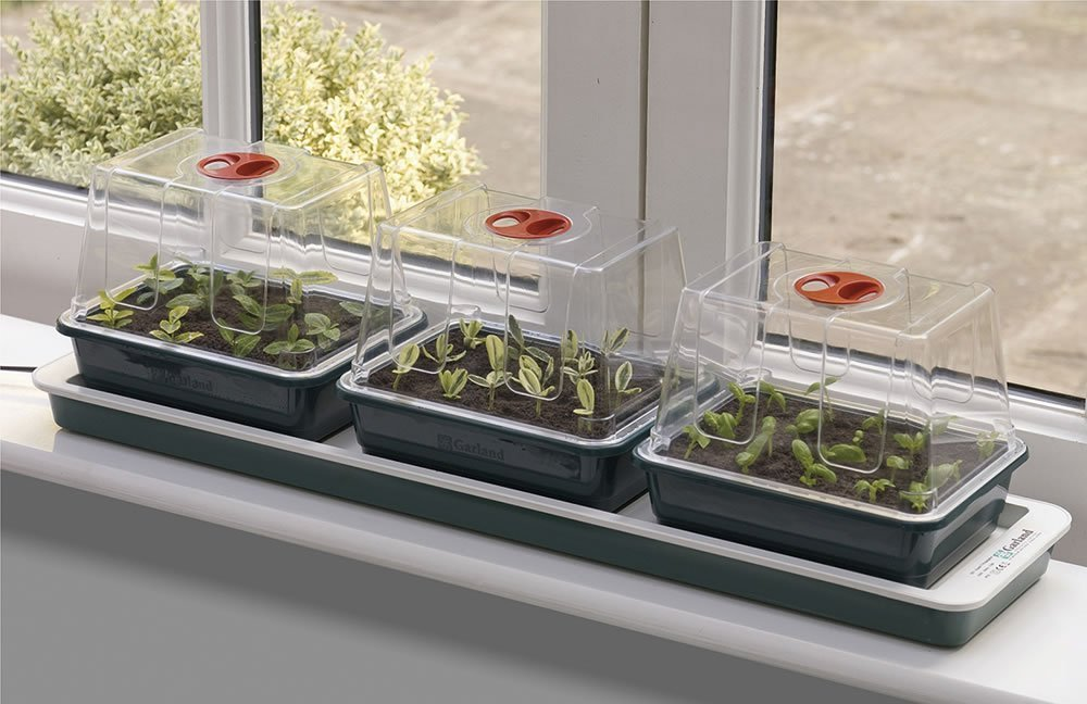 Garland Electric Heated Windowsill Propagator - 3 Trays Worth Gardening by Garland G50
