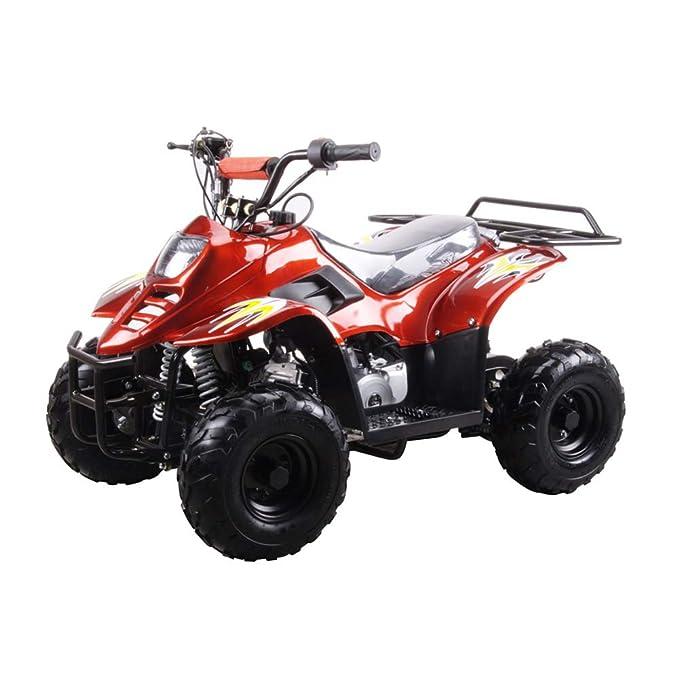 Amazon.com: Powersportsgalaxy Youth ATVs Tumbleweed-HD 110 ...