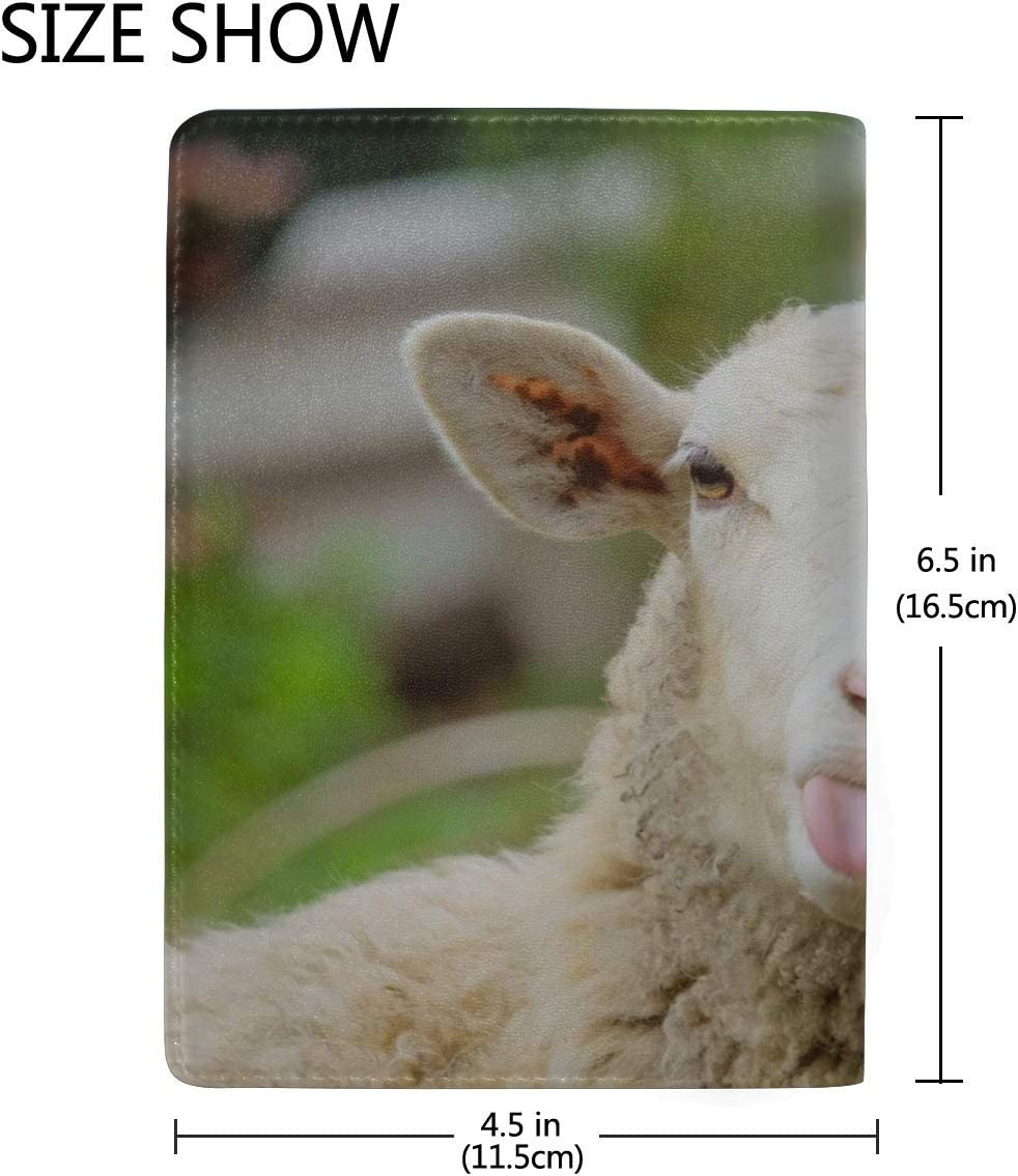 One Sheep In Meadow With November Sun Blocking Print Passport Holder Cover Case Travel Luggage Passport Wallet Card Holder Made With Leather For Men Women Kids Family