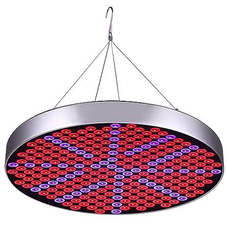 VOVOVO Lamparas Led Cultivo Lampara para Planta 50W 250 LED para Plantas Cultivo Indoor Hidropónica Flores