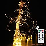 BOAEL Dimmable Waterproof & Portable Battery String Lights 8 Modes 100 LED 33ft Copper Wire Firefly Lights with Remote Control for Indoor and Outdoor (Warm White)