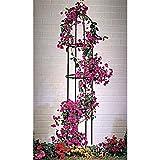 Lifetime Garden 19937 Obélisque de Jardin Support Tuteur en Forme Colonne Fer Multicolore 9,0 x 4,0 x 52,0 cm