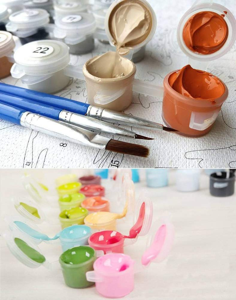 PAAANING Couleur par Num/éros sur La Toile Bricolage Peintures De Fleurs pour Le Salon sur Le D/écor De Mur Lever du Soleil Coquelicots Modulaire Image