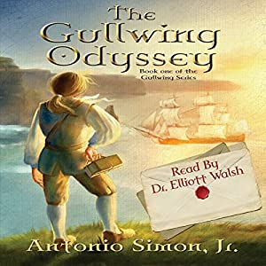 The Gullwing Odyssey Audiobook