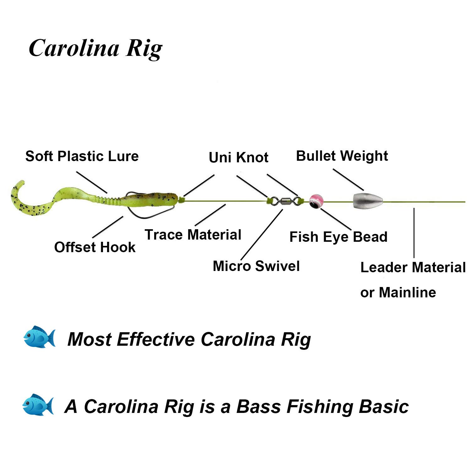 Image result for Carolina Rig